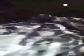 Porno rihana baise par rodman